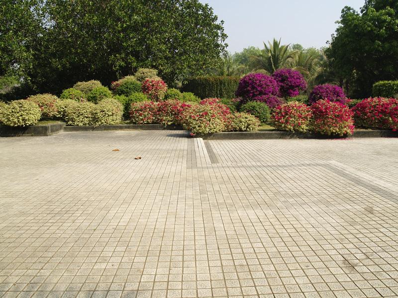 Джингхонг ботанический сад