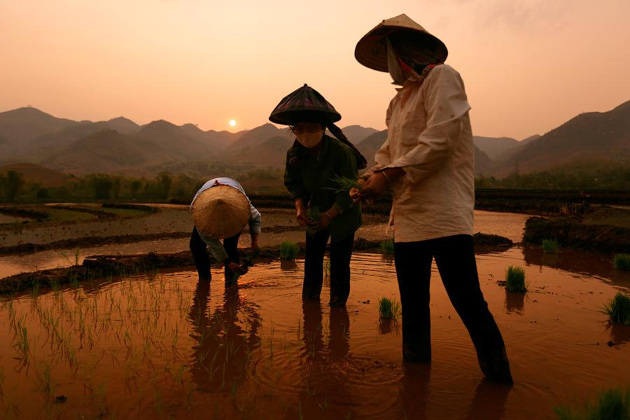Провинция Шонла, Вьетнам