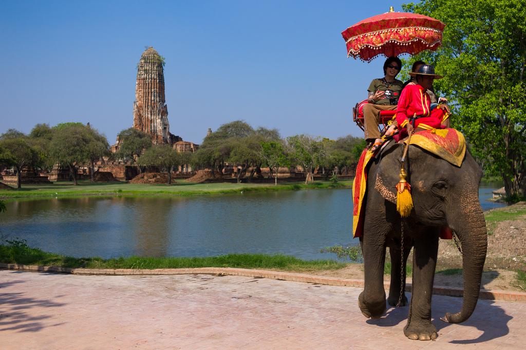 elephant-in-ayutthaya